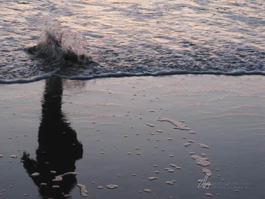 Shadow-Apparition_IMG_1537_b-(Dockweiller-Beach)