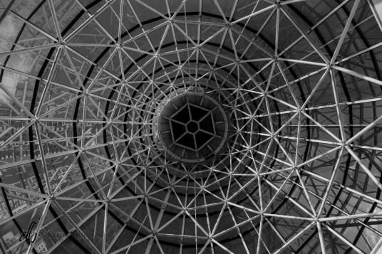 Vertigo-Confusion_DHrbr_0168