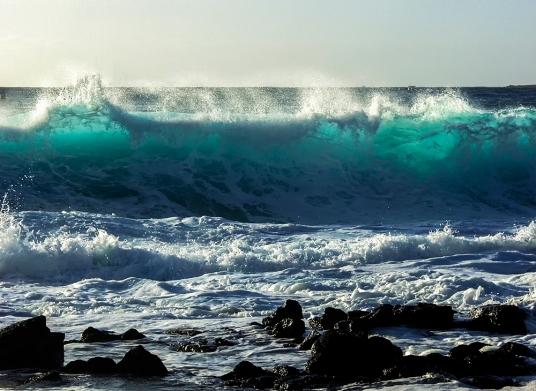 Translucent Surf_P1161513